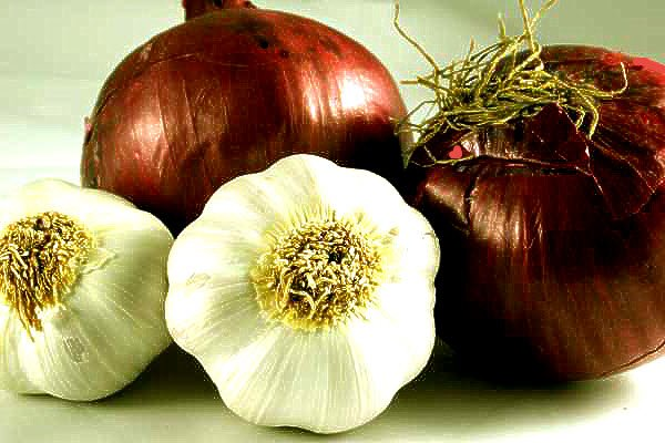 benefits of onions and garlic