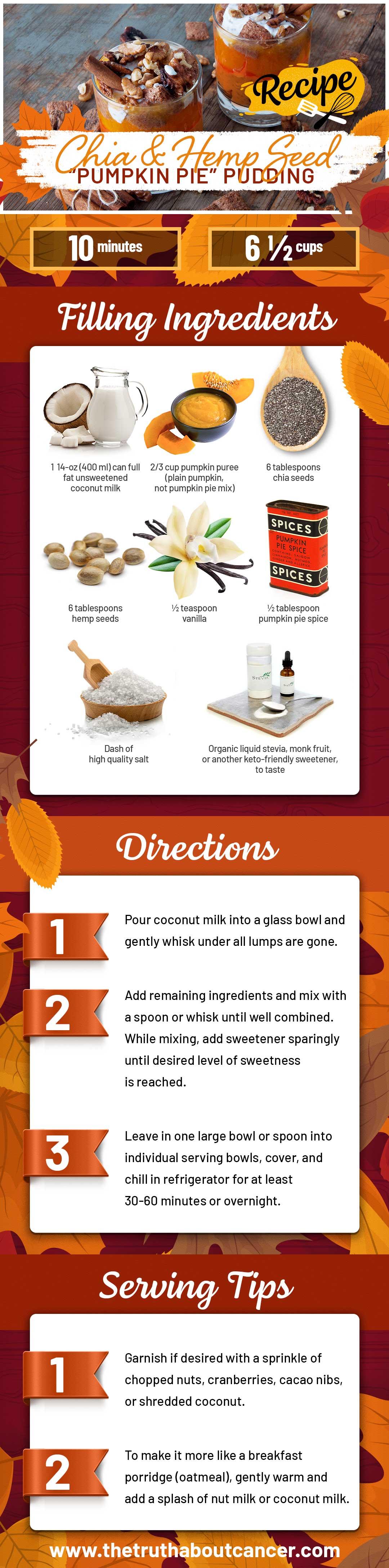 chia hempseed pumpkin pudding recipe