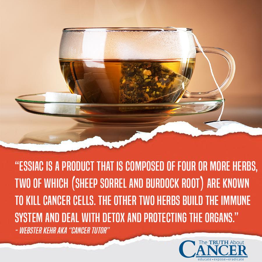 The Truth About Cancer Essiac Tea