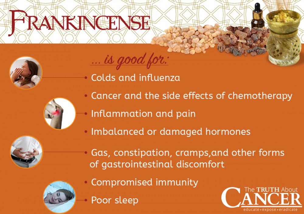 Boswellia-serrata-Frankincense-benefits