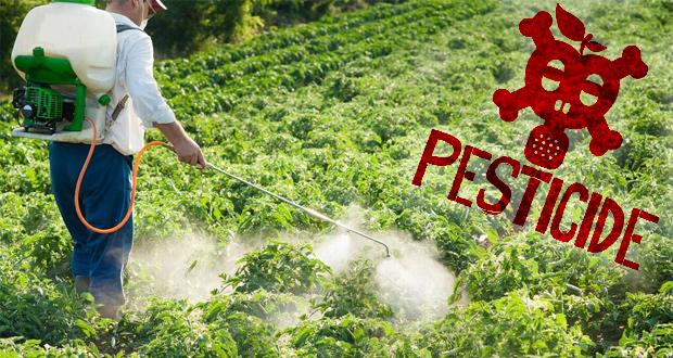 Slikovni rezultat za pesticides