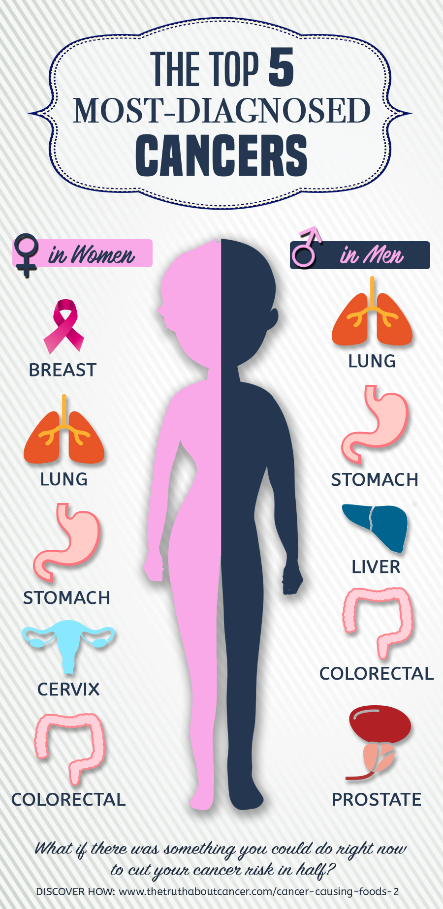 The top 5 most-diagnosed cancers in men and women.